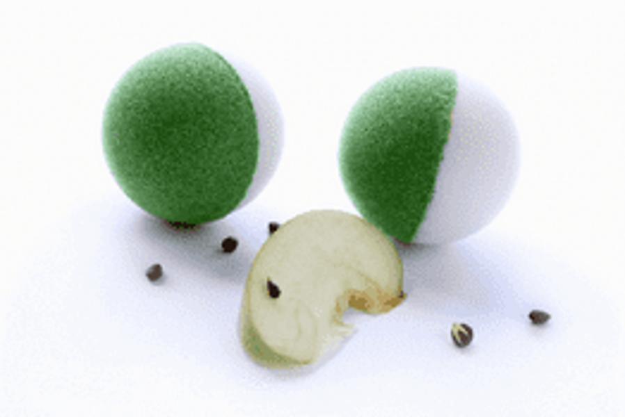 """Vannas bumba """"Zaļais ābols"""""""